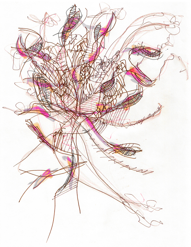 Bouquet: Ink on paper